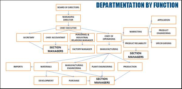 Departmentation by Function Chart