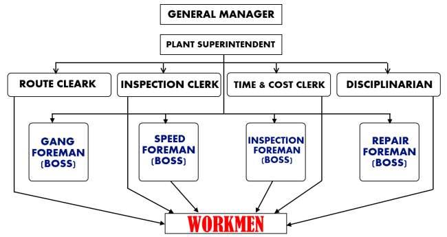 Functional Organization chart