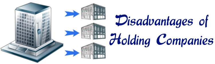 Disadvantages of Holding Companies