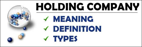 Holding Company meaning, definition, types