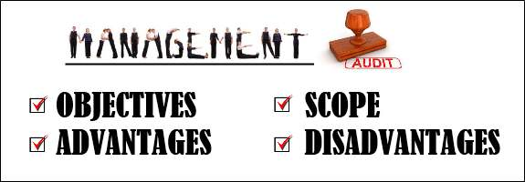 Management Audit - objectives, scope, advantages, disadvantages