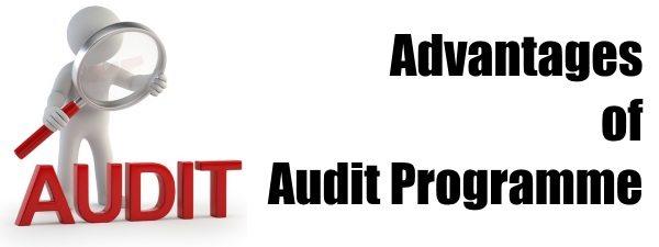 Advantages of Audit Programme