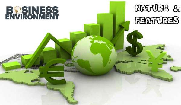 Business Environment - Nature and Features