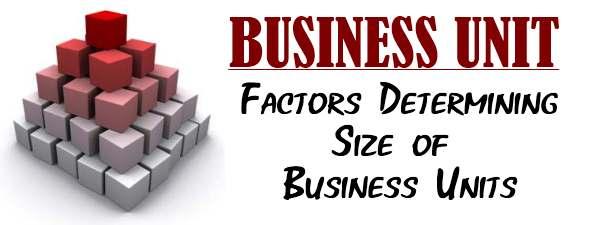 Business Unit - Factors determining size of business units
