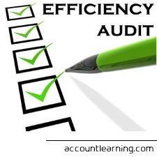 Efficiency Audit