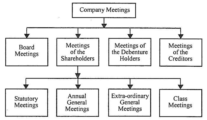 Kinds of Company Meetings