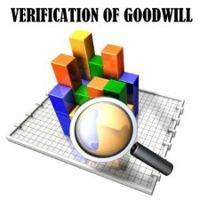 Verification of Goodwill