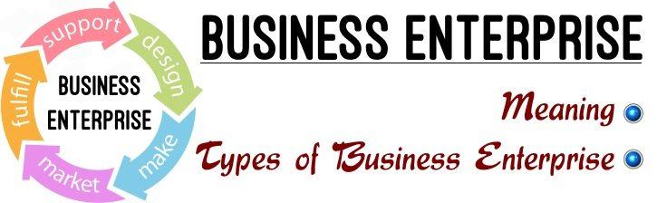 Business Enterprise - Meaning, Types of Business Enterprises