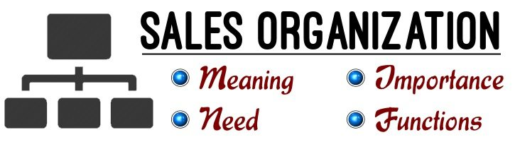 Sales Organization | Definition | Meaning | Importance | Need | Functions