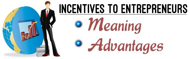 Incentives To Entrepreneurs Meaning Advantages