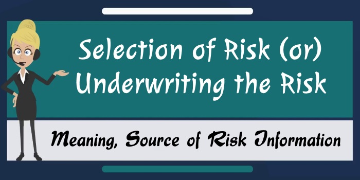 Underwriting the Risk