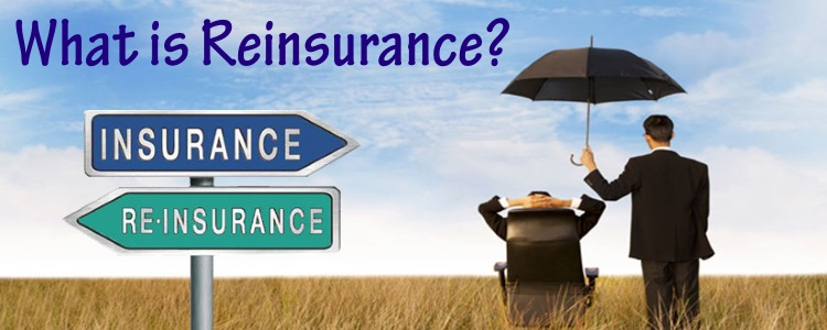 Image result for Reinsurance